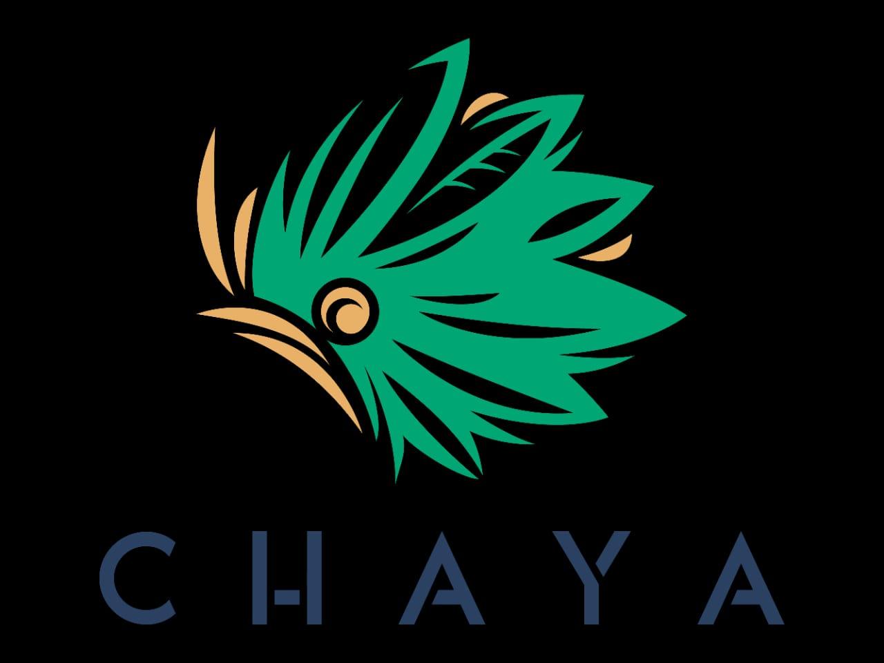 Chaya Kombucha
